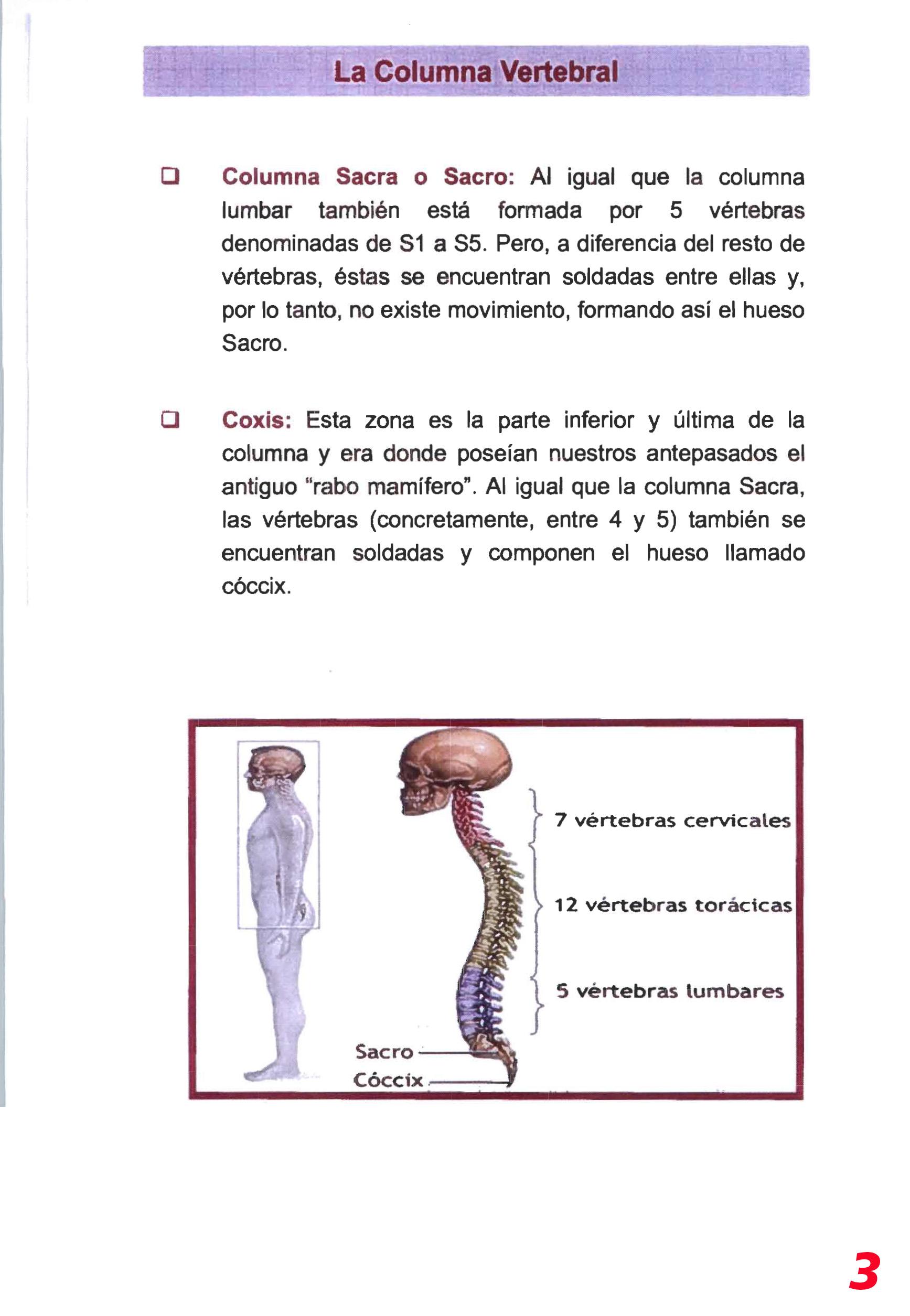 Higiene postural-3