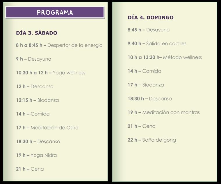 PROGRAMA RETIRO2
